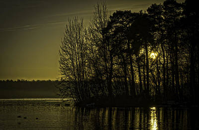 Photograph - Lazy Evening by Nick Field