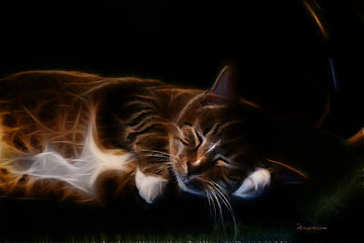 Tiger Fractal Photograph - Lazy Kitty by EricaMaxine  Price