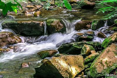 Photograph - Lazy River by Ed Roberts