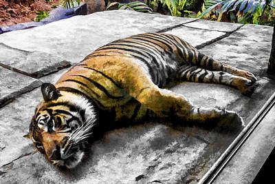 Digital Art - Lazy by Photographic Art by Russel Ray Photos