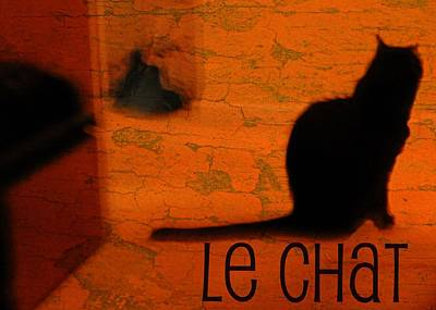 Le Cat Photograph - Le Chat by Diana Angstadt