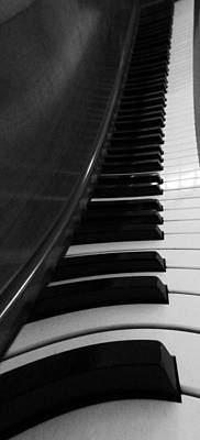 Beethoven Photograph - Le Piano Saisit by Dan Sproul