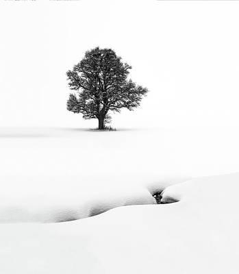 Minimalism Photograph - Le Solitaire by Marc Pelissier