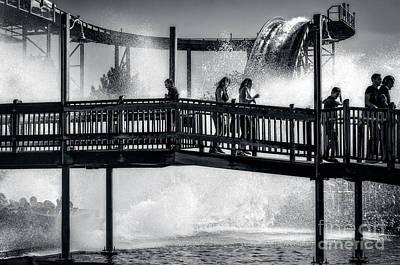 Photograph - Le Splash by Bianca Nadeau