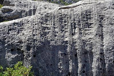 Leached Limestone Art Print