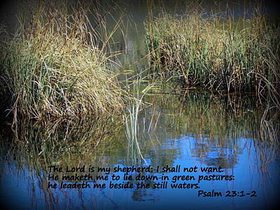 Photograph - Lead Me To Still Waters by Sheri McLeroy