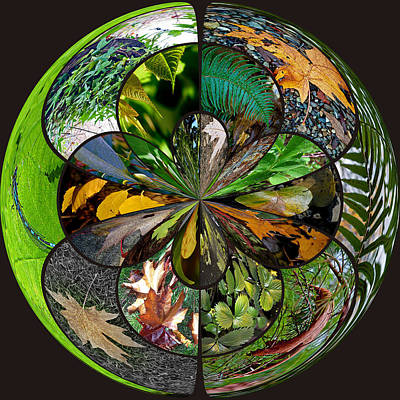 Photograph - Leaf Collage Orb by Tikvah's Hope