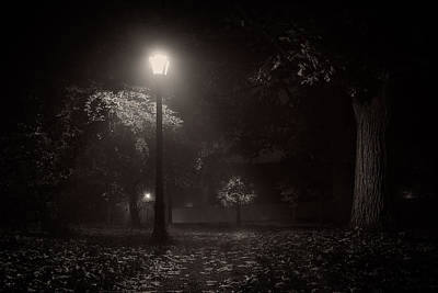 Leaf Covered Path At Night Art Print