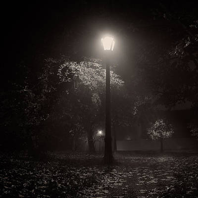 Leaf Covered Path At Night Square Art Print