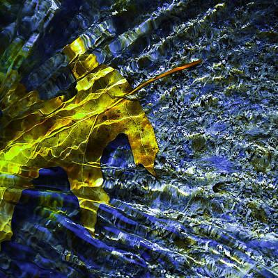Leaf In Creek - Blue Abstract Print by Darryl Dalton