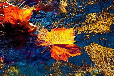 Leaf In The Stream Art Print by Jay Nodianos