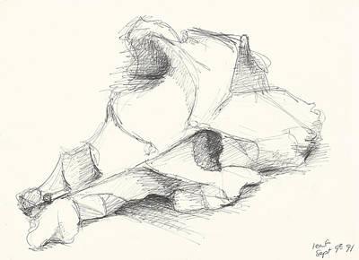 Messy Drawing - Leaf by Melinda Dare Benfield