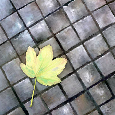 Leaf On Ground Art Print by Ondrej Kollar