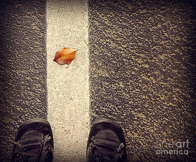 Photograph - Leaf On The Line by Meghan at FireBonnet Art