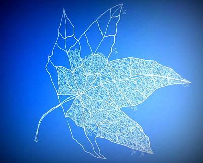 Leaf Study 1 Art Print