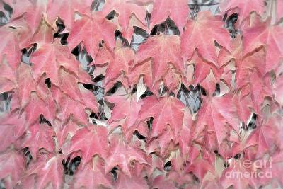 Photograph - Leaf Tapestry by Patrick Witz