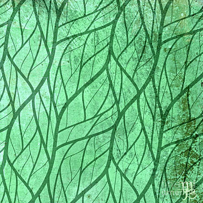 Photograph - Leaf Veins by Mindy Bench