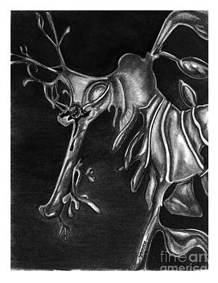 Drawing - Leafy Sea Dragon by Leara Nicole Morris-Clark