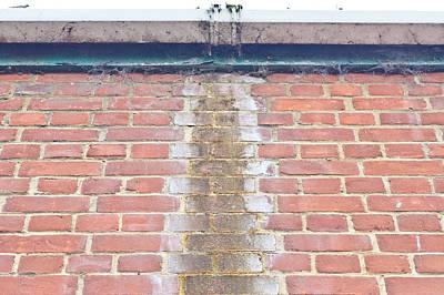 Leaking Gutter Art Print by Tom Gowanlock