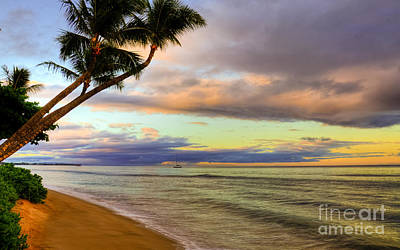 Kaanapali Beach Photograph - Leaning Coconut Palms by Kelly Wade