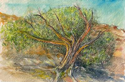 Painting - Leaning Juniper by Sandra Lytch