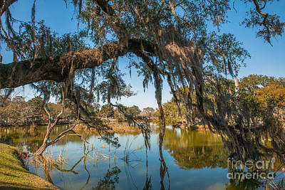 Photograph - Leaning Over The Water by Dale Powell