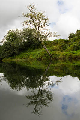 Photograph - Leaning Reflection by Teresa Hunt