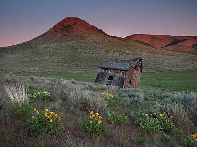 Photograph - Leaning Shed by Leland D Howard