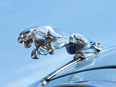 Photograph - Leaping Jaguar Hood Ornament by Gill Billington