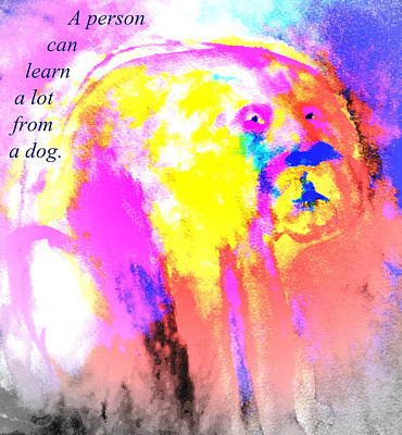 Cognition Painting - You Can Learn A Lot From The Dog by Hilde Widerberg