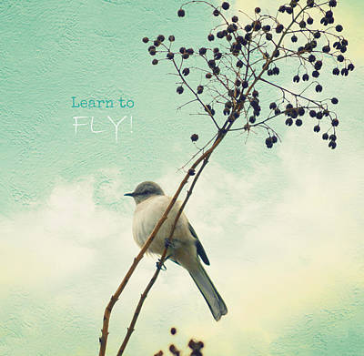 Learn To Fly Art Print by Robin Dickinson