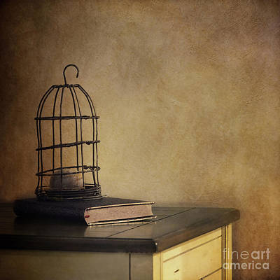 Cage Photograph - Learning Process by Priska Wettstein