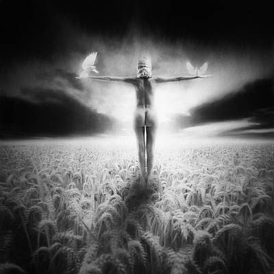 Photograph - Learning To Fly, 2014 by Erik Brede