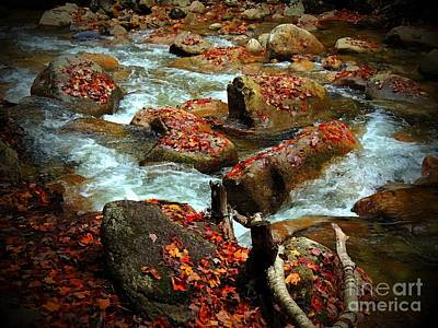 Photograph - Leaves Decorating River Rocks by Marcia Lee Jones