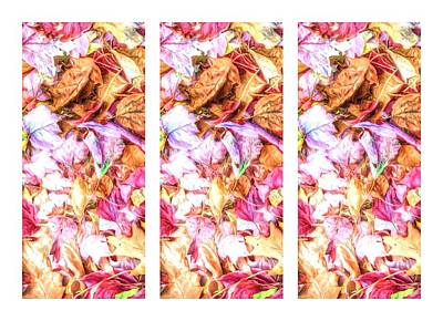 Photograph - Leaves Duplicated Triptych by Alice Gipson