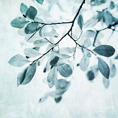 Abstract Ink Paintings In Color - Leaves In Dusty Blue by Priska Wettstein
