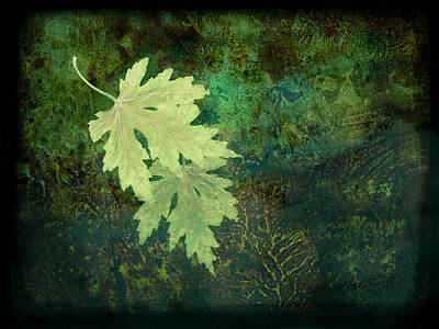 Fallen Leaf Digital Art - Leaves On Green by Ann Powell
