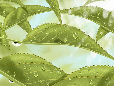 Digital Painting - Leaves by Veronica Minozzi