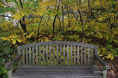 Photograph - Leaving In The Fall by Geri Glavis