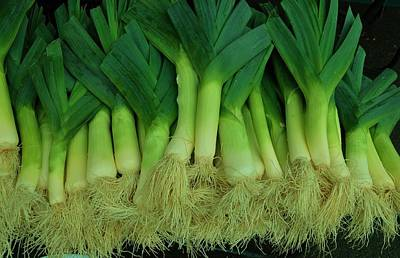 Photograph - Leeks1 by Robert Habermehl