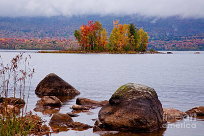 Photograph - Lefert's Pond II by Butch Lombardi