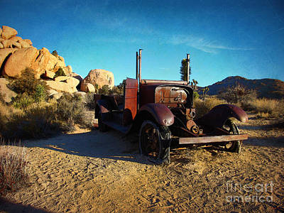 Photograph - Left For Dead - Joshua Tree National Park by Glenn McCarthy