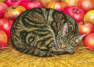 Apple Painting - Left Hand Apple Cat by Ditz