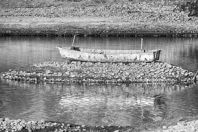 White Photograph - Left Over From The Flood In Black And White by James BO  Insogna