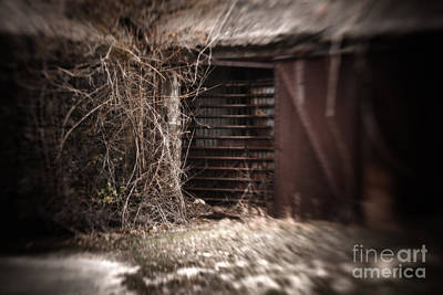 Virginia Photograph - Left To Time by Lisa McStamp