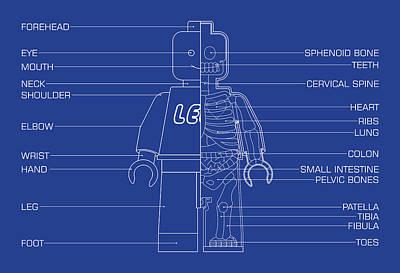 Dr. Teeth Digital Art - Legoman Anatomy by Michael D