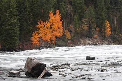 Photograph - Lehardy Rapids by Gerry Sibell