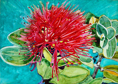 Lehua Blossom Art Print