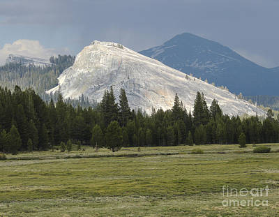 Photograph - Lembert Dome Yosemite by L J Oakes
