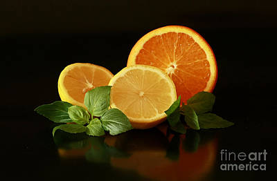 Lemon And Orange Delight Art Print by Inspired Nature Photography Fine Art Photography